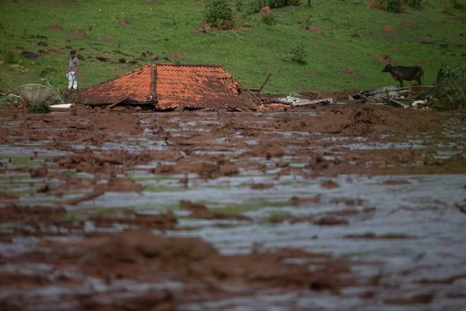 Barragem de Brumadinho não era listada entre as que ofereciam risco, mas estilo de análise pode deixar escapar fragilidades. | Mauro Pimentel/AFP