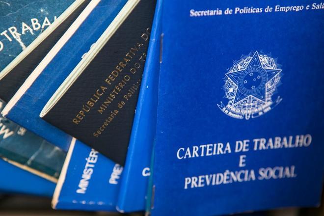 Modelos de carteira de trabalho   Marcelo Andrade/ Gazeta do Povo