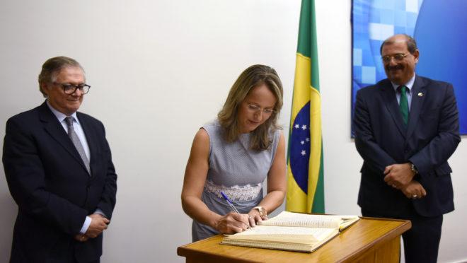 Tânia Leme de Almeida durante cerimônia de posse na Câmara de Educação Básica do Conselho Nacional de Educação, em janeiro de 2019. Foto: Andre Sousa / MEC