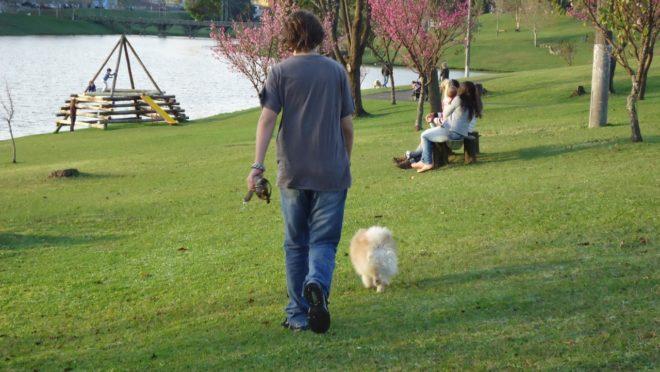 Garoto passeia com cão em parque