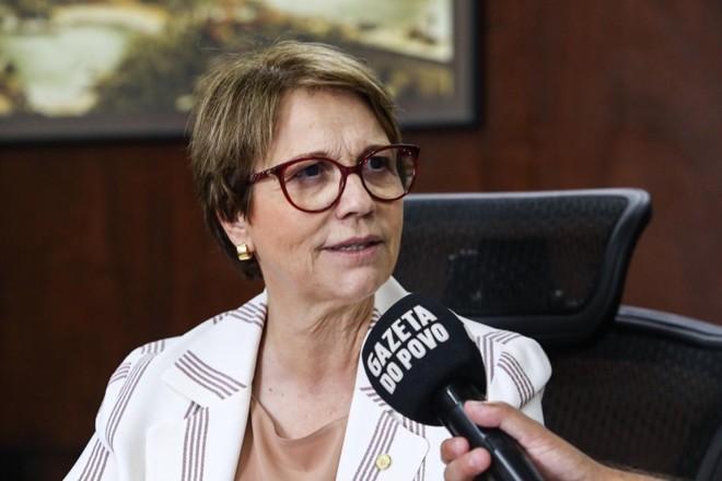 Ministra recebeu equipe da Expedição Safra em seu gabinete, em Brasília | Rogério Machado/Gazeta do Povo