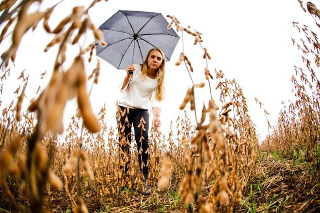 A chuva que não dá trégua impede a produtora Ana Santim de colher a soja e plantar o milho safrinha, o que significa prejuízo no bolso. | Michel Willian/Gazeta do Povo