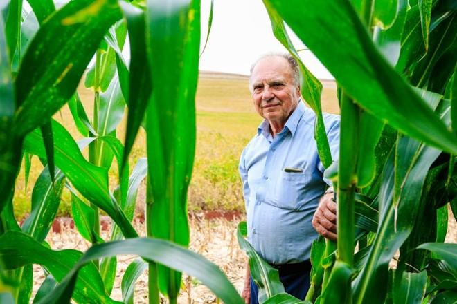 O produtor Eny Fiorentin espera safras de milho e soja (ao fundo) melhores do que as do ano anterior. | Michel Willian/Gazeta do Povo