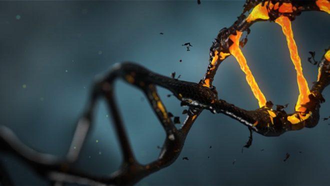 É preciso levar a sério os problemas sociais que o melhoramento genético pode causar (Imagem: Pixabay)