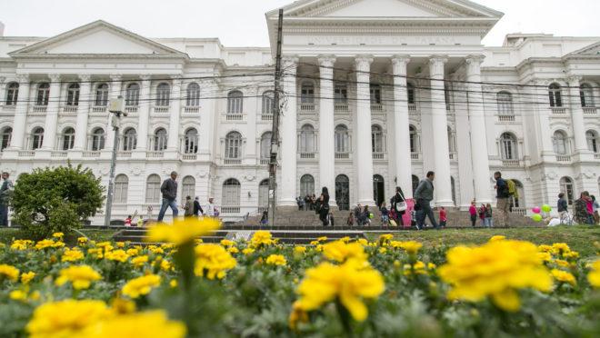 Prédio histórico da UFPR com flores amarela à frente