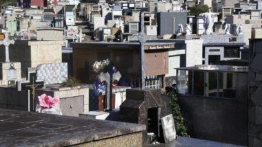 Foto: Aniele Nascimento/Gazeta do Povo