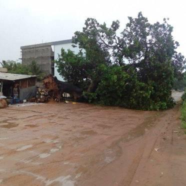 Ciclone Kenneth danificou casas e derrubou árvores em Cabo Delgado, em Moçambique | Foto: STRINGER /WFP /AFP