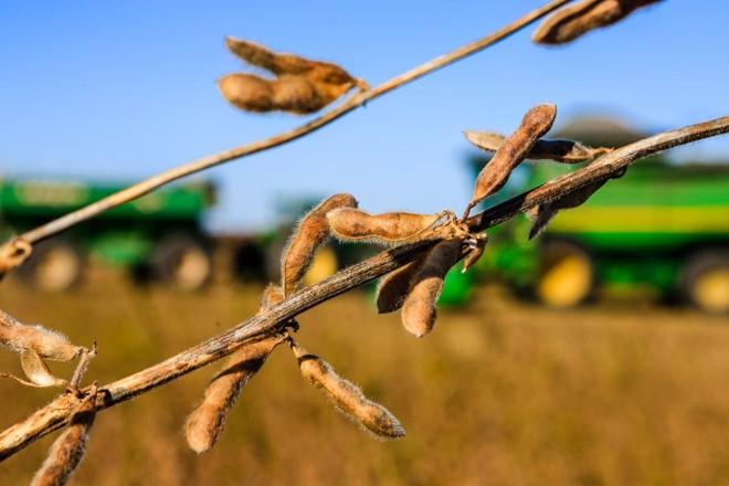 Expedição Safra no Uruguai: País deve colher 2,7 milhões de toneladas de soja | Michel Willian