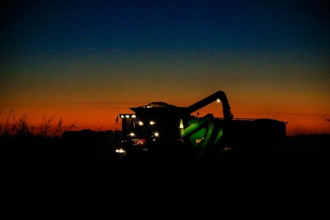 Com tempo bom, colhedeiras avançam durante a noite para retirar soja dos campos | Michel Willian