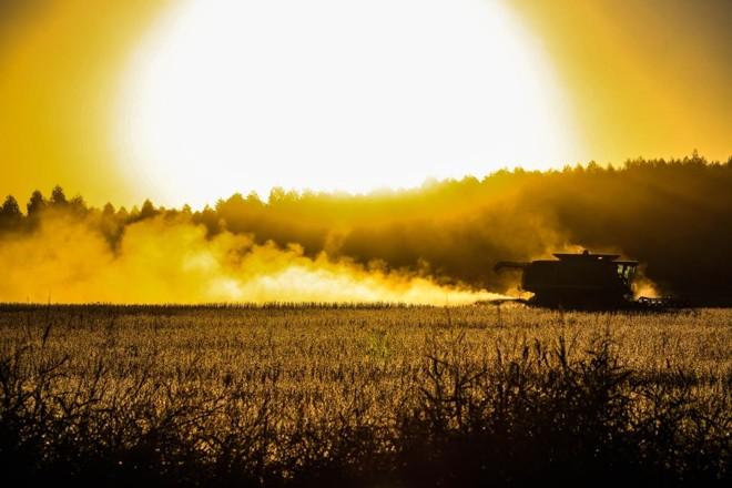 Custo com combustível, no Uruguai, é um dos mais elevados do mundo para o cultivo agrícola. O litro do óleo diesel custa R$ 6,00 | Michel Willian