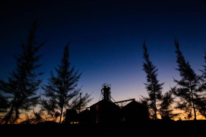 Em curto prazo, custos elevados de produção devem impedir aumento de área plantada no Uruguai | Michel Willian