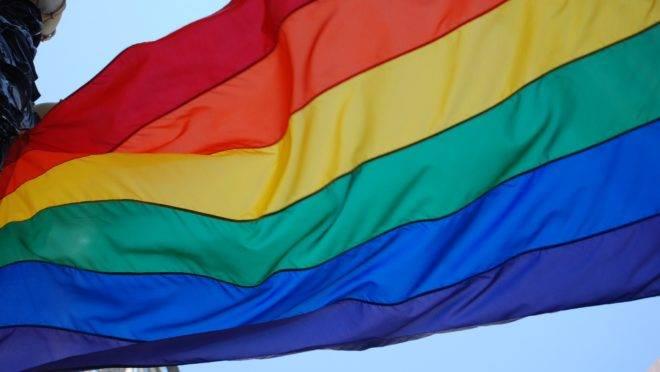 Duas acadêmicas se manifestam em resposta a matéria sobre livro que questiona a adoção de crianças por casais homossexuais nos Estados Unidos.