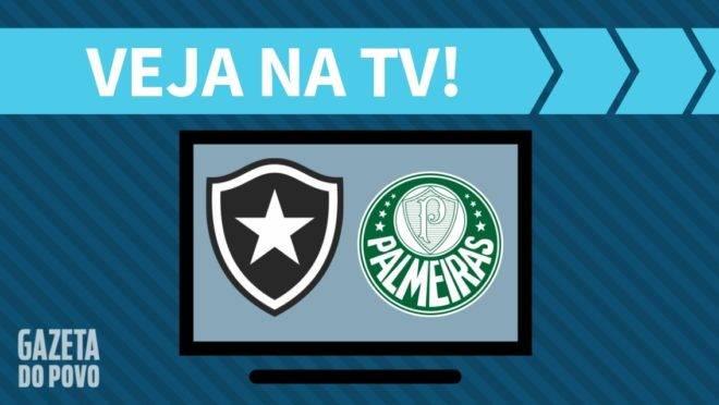 Botafogo x Palmeiras ao vivo