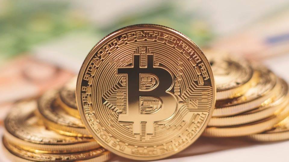 Meia guilherme bitcoins delaware park sports betting super bowl