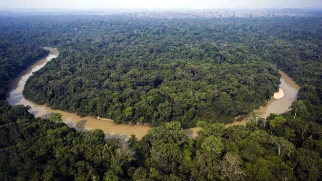 Fundo Amazônia é iniciativa criada em 2008 para apoiar combate ao desmatamento na região amazônica