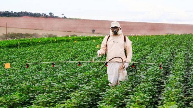 Segundo o Mapa, os produtores precisam de informação e de equipamentos adequados de proteção para fazer a aplicação de agroquímicos.