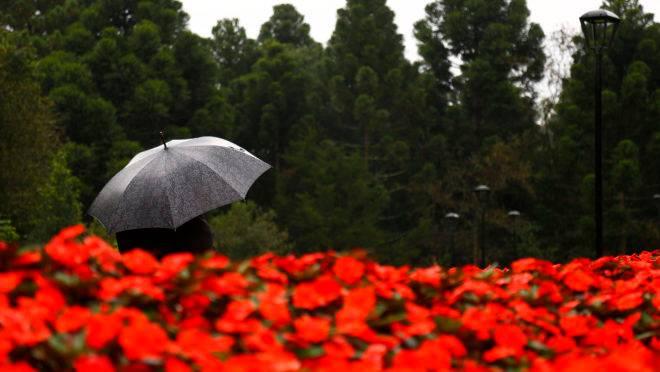 A estação florida também vai ser molhada no Paraná