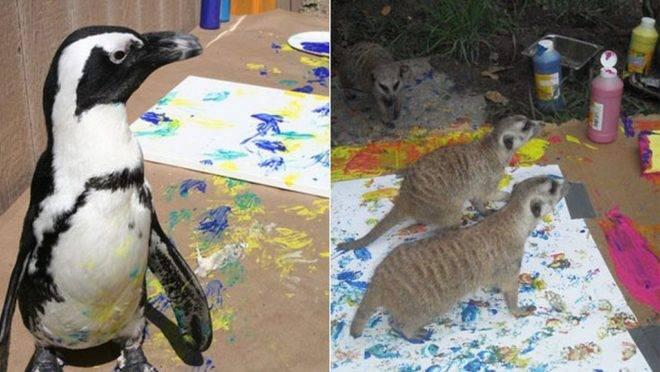 Animais de diversos zoológicos dos EUA produziram as obras | Divulgação