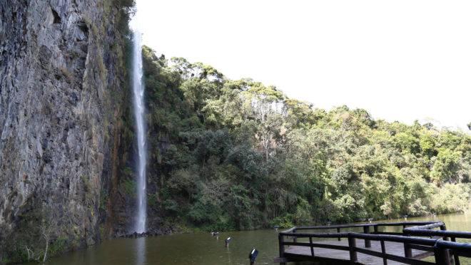 Parque Tanguá, em Curitiba.