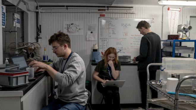 Equipe de trabalho da startup britânica Entocycle.