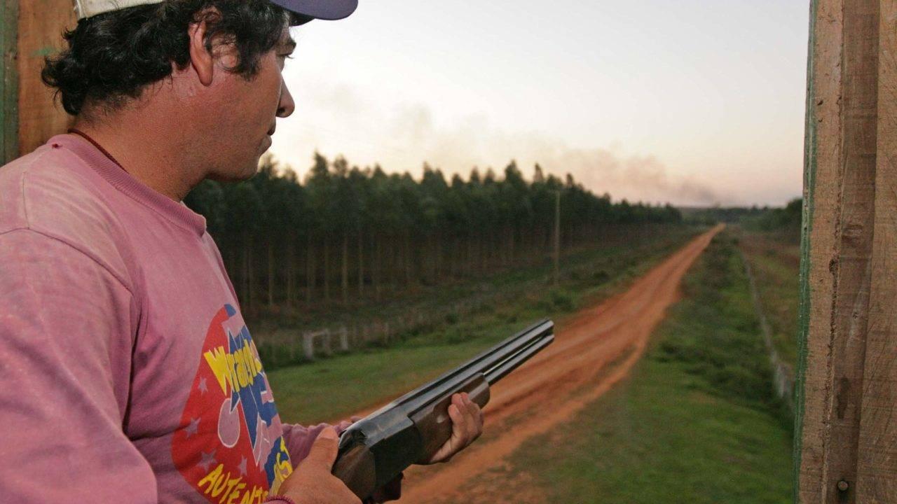 Posse de armas em fazenda: mudança no estatuto do desarmamento