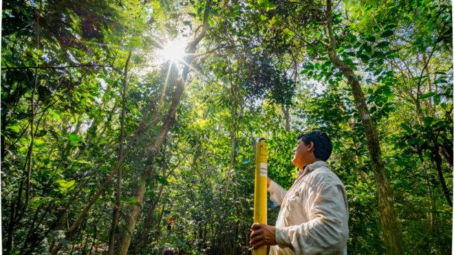 Técnico de Itaipu em área de preservação