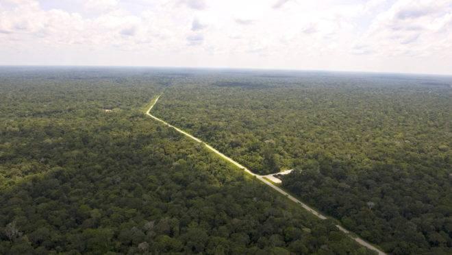 Vista aérea de caminho de duto da Petrobrás entre Manaus e o campo de petróleo de Urucu