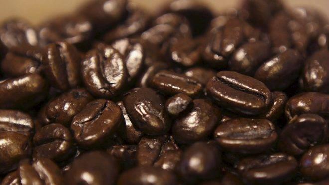 Todos os dez principais destinos internacionais do café brasileiro aumentaram suas compras no ciclo 2018/19.