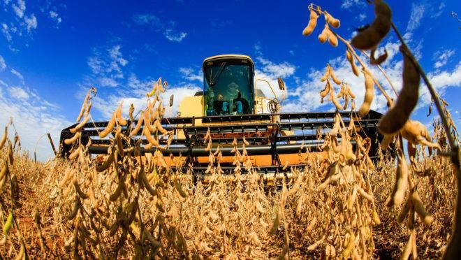 Brasil deve produzir 144 milhões de toneladas de soja em 2028, ante 121 milhões de t dos EUA.