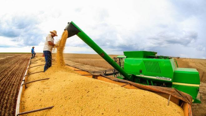 Estimativa para a colheita de grãos no Brasil na safra deste ano deve ser recorde, segundo a Conab. A soja (foto), no entanto, apesar do aumento da área plantada deve ter produção aquém do ciclo anterior.