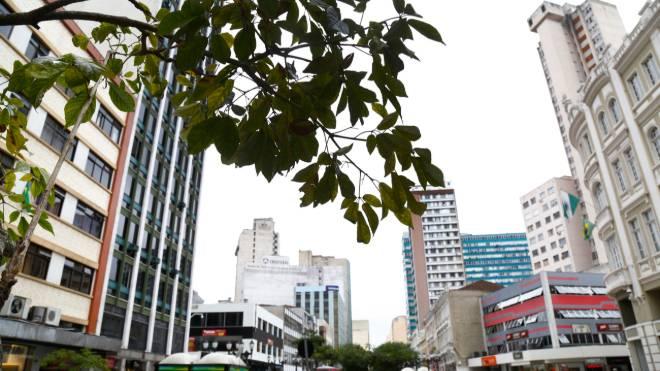 Quinta-feira será nublada em Curitiba.