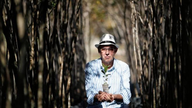 Engenheiro agrônomo Roberto Salgueiro, que completou 40 anos de prefeitura na última semana, trabalhando na parte de arborização urbana.