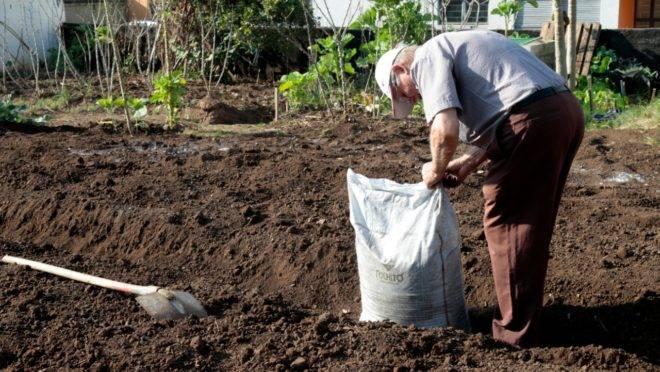 A horta funciona de maneira terapêutica para a comunidade do Boqueirão, em Curitiba.