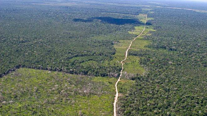 Área de floresta desmatada.
