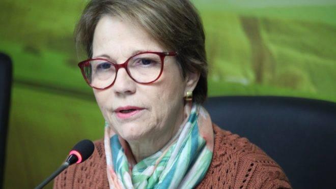 A ministra da Agricultura, Tereza Cristina, durante café da manhã com jornalistas, em Brasília, onde defendeu que os alimentos consumidos no Brasil são seguros.