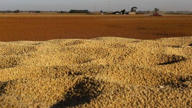 Colheita de soja na Argentina. País poderia ser uma alternativa ao Brasil, mas produtores estão preferindo estocar o grão.