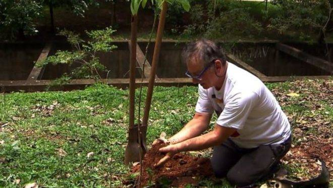 """Hélio da Silva planta mais uma árvore:""""Tenho três filhos, três netos e 25 mil filhos ecológicos""""   Arquivo Pessoal"""