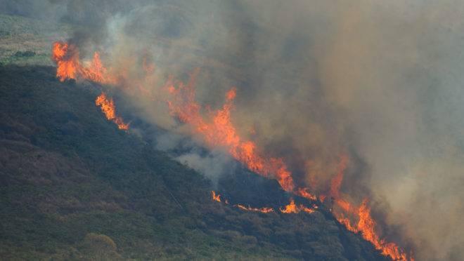 Bolsonaro disse que ONGs teriam envolvimento em queimadas na Amazônia