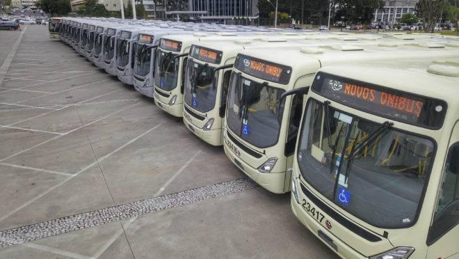 Como é a operação das linhas de ônibus metropolitanas em Curitiba e região?