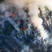 Como o fogo na Amazônia afeta o governo Bolsonaro e expõe crise ambiental no Brasil