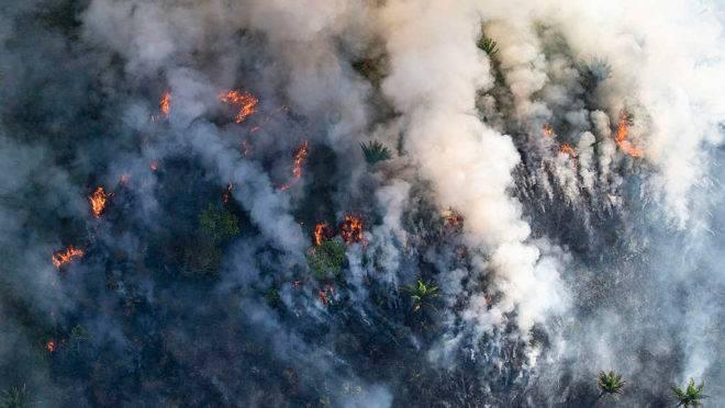Fogo consome árvores na Amazônia em registro fotográfico do Greenpeace: Brasil virou alvo de críticas do mundo todo.