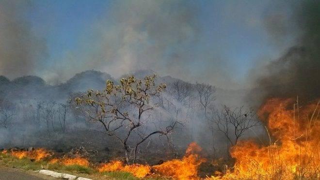 queimadas-amazonia1