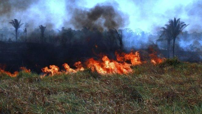 queimadas rondonia