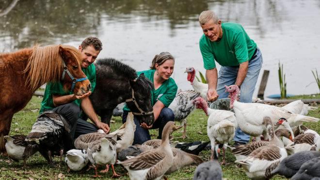 Turismo rural é fonte de renda do Rancho Caminho das Águas, na Colônia Muricy em São José dos Pinhais, que foi visitado na primeira Expedição Agricultura Familiar da Gazeta do Povo, em 2015