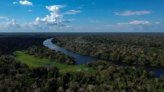 Vista aérea da reserva Mamirauá, na floresta amazônica brasileira.