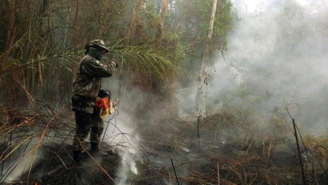 Fundo da Petrobras vai destinar R$ 1 bilhão para combate às queimadas na Amazônia