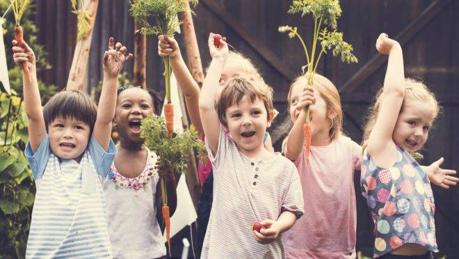 crianças felizes na horta da escola