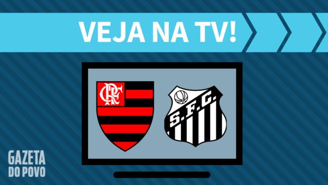 Flamengo x Santos: veja na TV