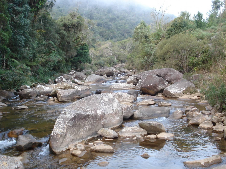 O caminho reserva belas surpresas . Foto: Turismo Campo Alegre/divulgação