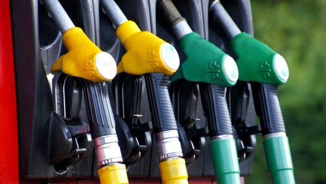 Petrobras reduz preço da gasolina e do diesel a partir de sexta (13)